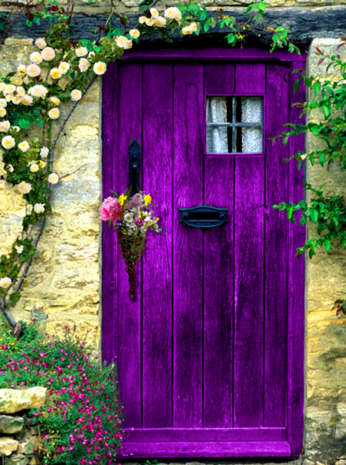 Purple... de l'audace !