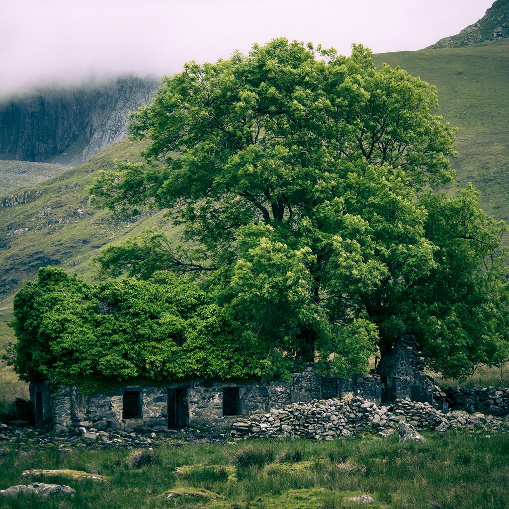 MY SECRET GARDEN ruine avec un toit vert Llanberis AU pAYS DE gALLES