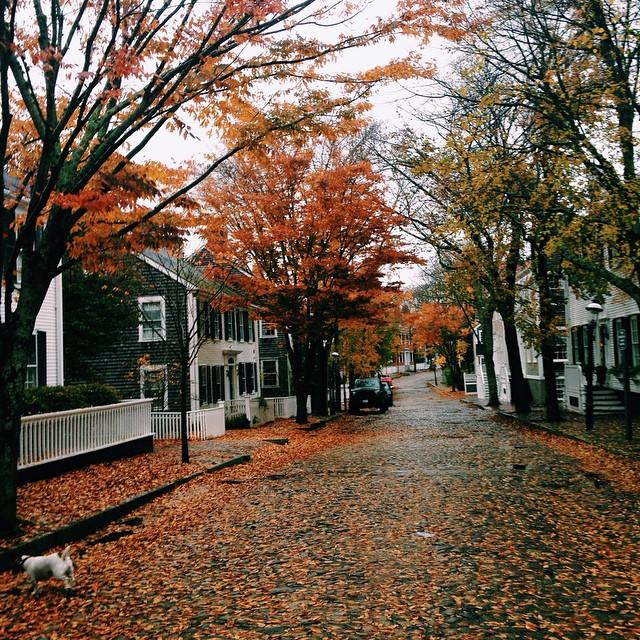 rain-washed-soul-november-2014