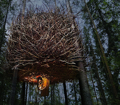 TREE HOTEL le nid 2