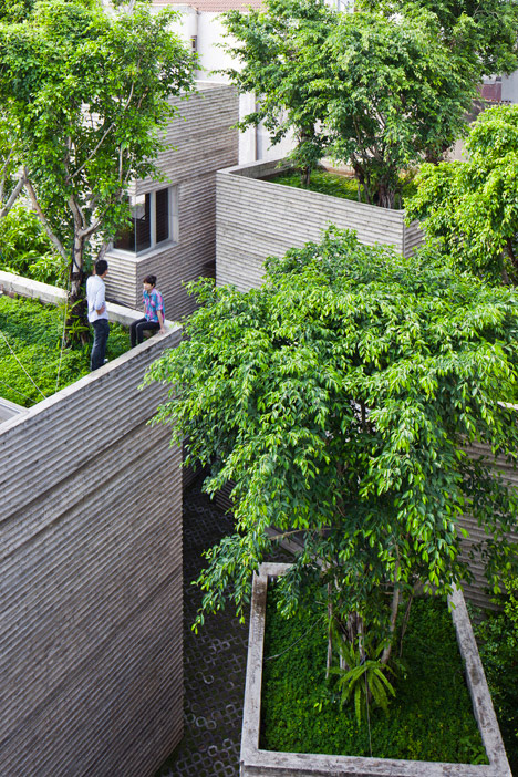 Tree-Topped-Houses-Vietnam-2
