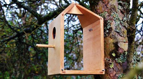 birdhouse-4