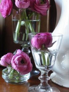 fleurs que j'aime La Baronne