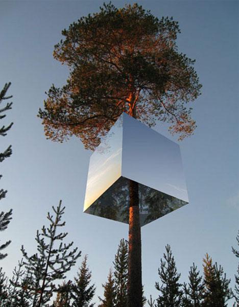hotel-in-tree  DORNOB
