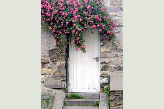 fleurie à... Montmartre !
