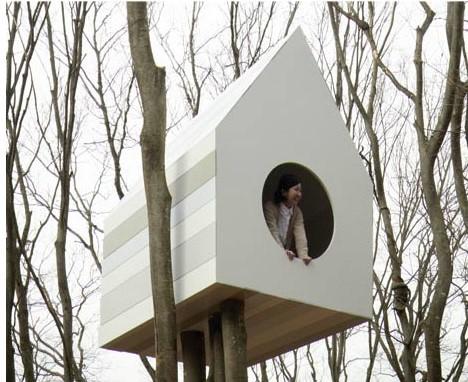 treehouse-human-bird-sides (2)
