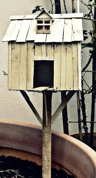 une maison pour mon Piou  rogné